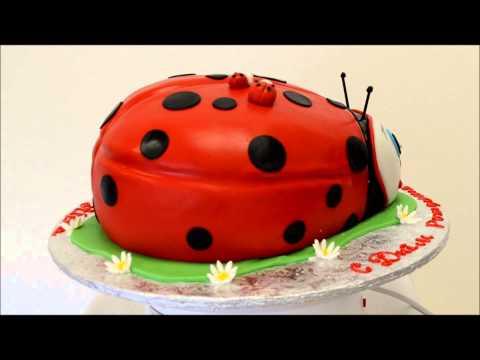 Lady Bug Cake Presentation - Custom Cake - Ladybug Birthday Cake