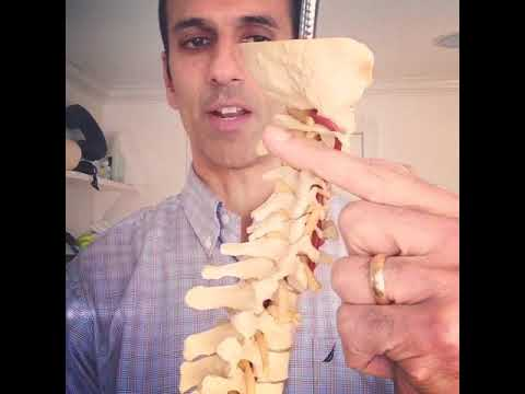 Neck posture and blood flow to the brain