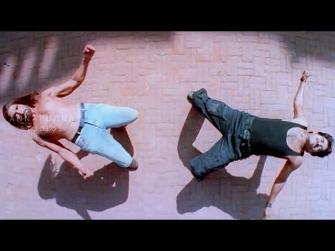 Xxx Mp4 Rahul Dev Amp Nagarjuna Climax Fight Scene Mass Movie 3gp Sex