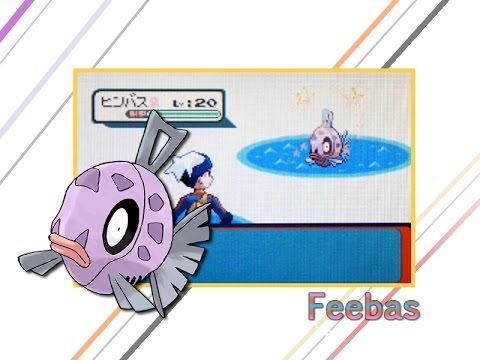 [Live] Shiny Feebas after only 997 FE's in Jp Ruby + Evolution! ISHC#1