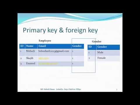 SQL Server Bangla Tutorial 6   Primary key & Foreign key relationship