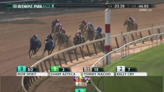 Andy Serling's 2017 Belmont Stakes Preview Videos & Books