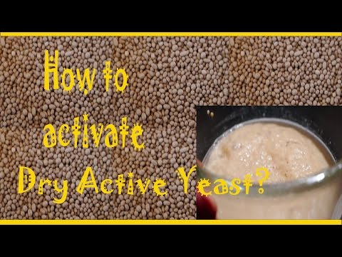 IN HINDI-RIGHT WAY OF ACTIVATING DRY YEAST AT HOME: how to make pizza part 1 IN HINDI
