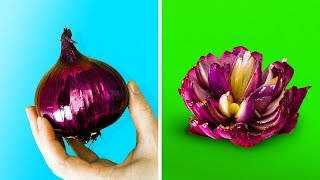 15 فكرة سهلة لتزيين الطعام