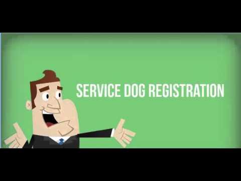 Registered Service Dogs Promo