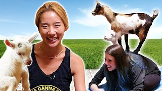 Animal Lovers Get Surprised By Goat Yoga