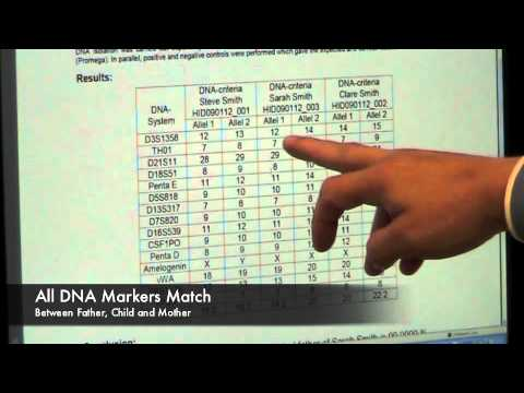 Understand Your DNA Test Results