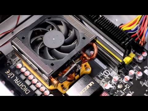AMD Support: How To Replace Your Processor