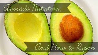 Avocado Nutrition Facts How To Ripen Avocados