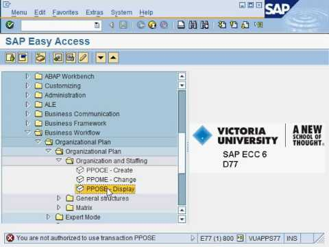 How To Reveal The Transaction Code Of Of Sap Menu Items