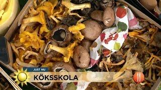 Bästa svamptipsen i Fredriks köksskola - Nyhetsmorgon (TV4)