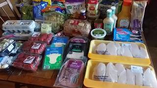 ALDI HAUL- $250 Monthly Budget! AFFORDABLE GROCERIES
