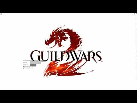 Guild Wars 2 - Installed the game client