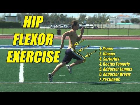 Hip Flexor Exercises. Great for Speed! aka Thigh Flexors.