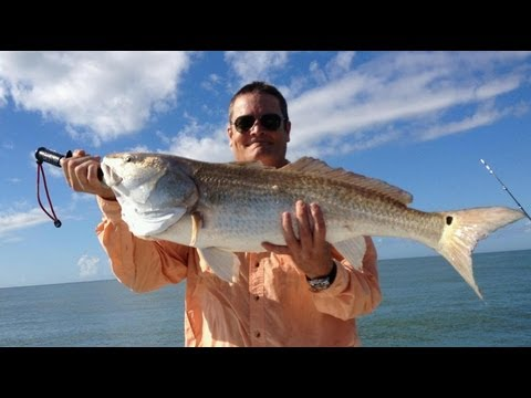 How To Catch Bull Redfish in Texas - 20+ Bullreds in 5 Hours!!!