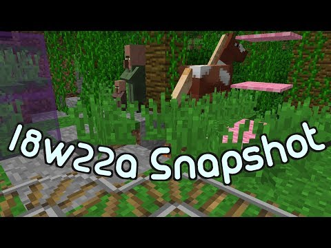 18w22a Snapshot- Bug smashing, fixes  and fine tuning