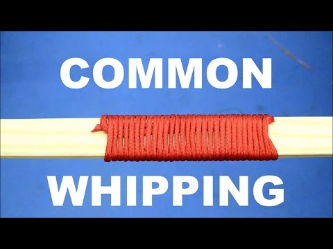 Common Whipping