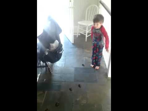 Dog pooping in house! Kid counting the poops! (on VidWars App)