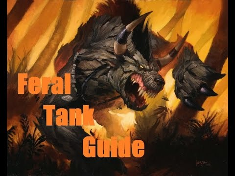 Vanilla WoW Class Guide: How to be a bear! ( Druid Feral Tank )