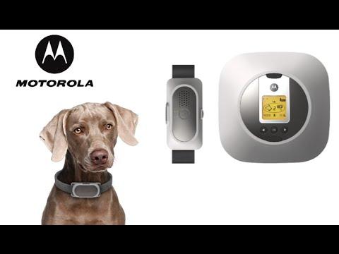 Motorola Wireless Fence 25 from Binatone
