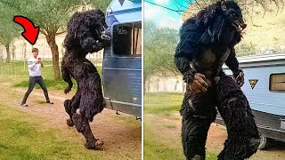 Weirdest Things That You Haven't Seen Before