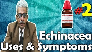 Echinacea (Part -2) - Uses and Symptoms in Homeopathy by Dr. P.S. Tiwari
