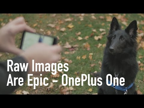 OnePlus One RAW Image Test | Best Phone Photography Yet