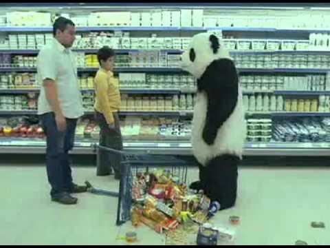 Passion For Pandas