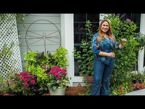 Do It Yourself Vertical Wall Gardens