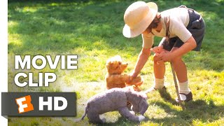 Goodbye Christopher Robin Movie Clip - Hundred Acre Paradise (2017) | Movieclips Coming Soon