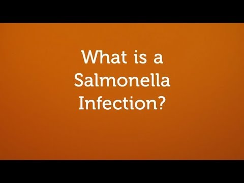 What is a Salmonella Infection? (Contaminated Food or Water)