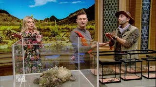 Download ″Brave or Afraid″ with Coyote Peterson Video