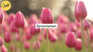 Synoniemen - Mr. Chadd Academy