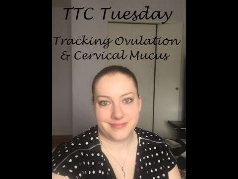 TTC Tuesday - Tracking Ovulation Using Cervical Mucus