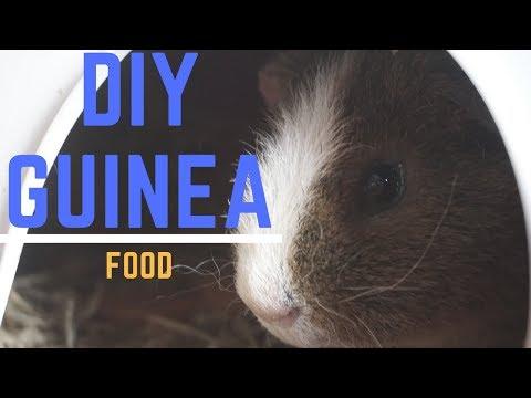 Super Easy DIY Guinea pig food life hack!