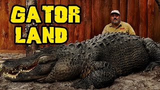 Rare GIANT Alligators at Gatorland Orlando zoo Jay is Living the dream