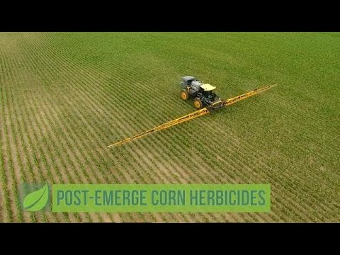 Post-Emerge Corn Herbicides #1048 (Air Date 5-6-18)