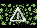 Young Thug Stoner Flosstradamus Remix