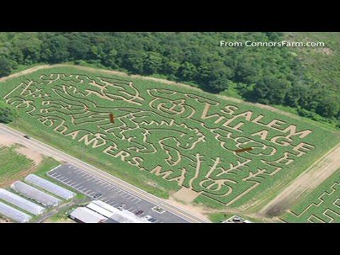 Family stuck in corn maze calls 911
