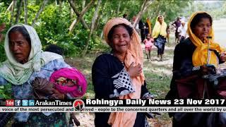 Rohingya Daily News Today 23 November 2017 أخبارأراكان باللغة #الروهنغيا #ရိုဟင္ဂ်ာ ေန႔စဥ္ သတင္း