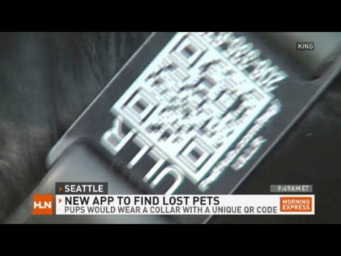 App replaces 'lost dog' flyers