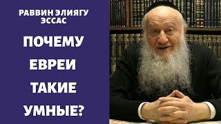 Почему евреи такие умные люди?