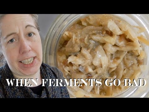 When Ferments Go Bad (How to tell and What to Look For)