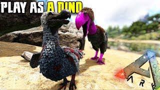 THE TERROR BIRD STRUGGLE | PLAY AS A DINO | ARK SURVIVAL EVOLVED
