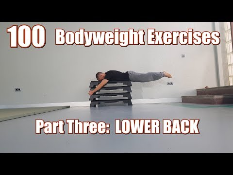 100 BODYWEIGHT EXERCISES (NO GYM REQUIRED) | LOWER BACK