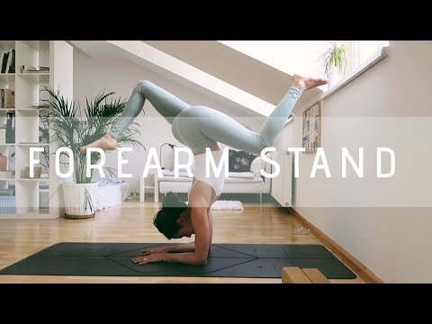 How to do a FOREARM STAND for beginners