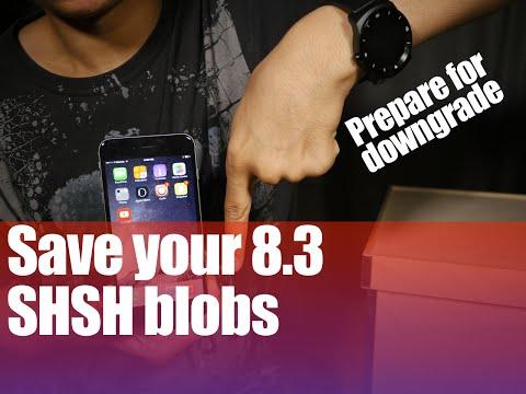 Preparing for a potential iOS 8.3/8.4 Downgrade