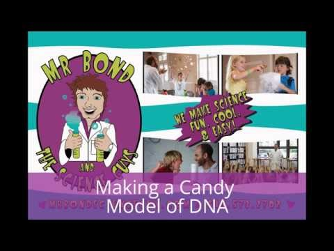 Making a Candy Model of DNA with Halloween Candy