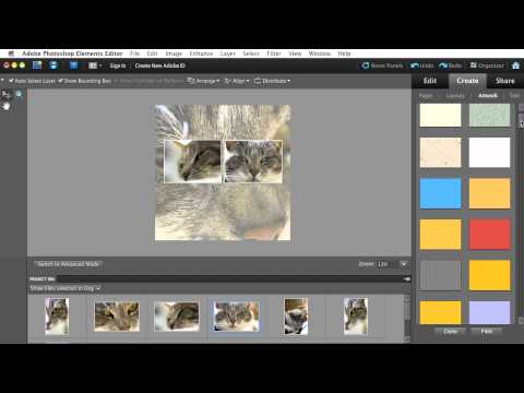 Creating and Sharing a Photo Collage with Photoshop Elements 10