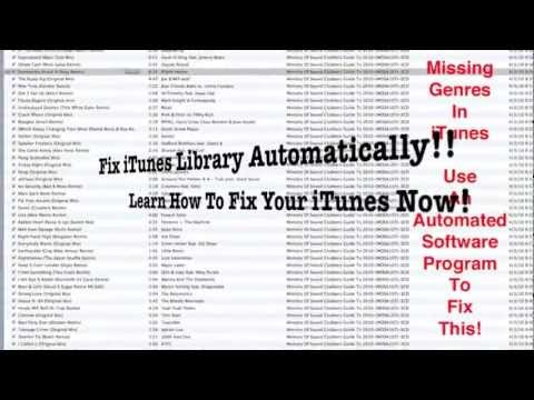 Fix iTunes Library Automatically WIth An iTunes Fixer Program
